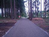 Cesta Vrcha